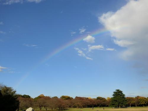 20151115昭和記念公園_虹.jpg